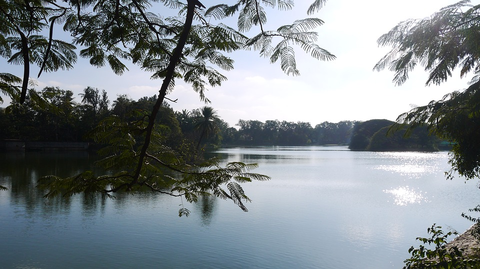 bangalore-2465998_960_720