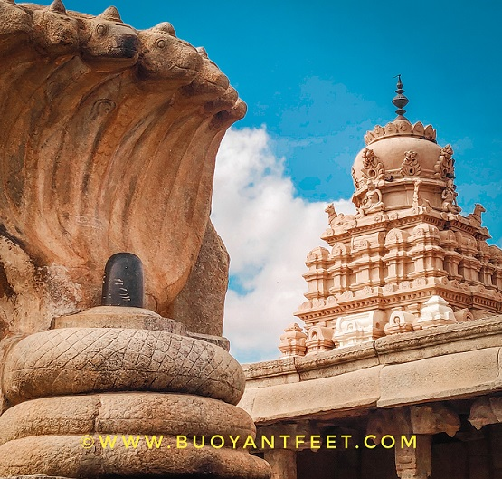 This seven hooded Lingam of Lord Shiva Mahadev is one of the most instagrammable location inside Lepakshi Veerbhadra Temple